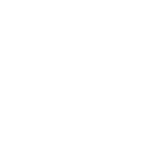 Ali The Producer logo